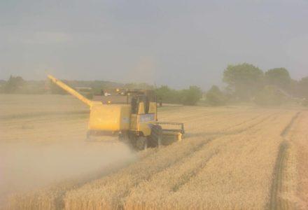 Rolnicy dostaną wyższe emerytury. Skorzysta prawie 400 tys. osób