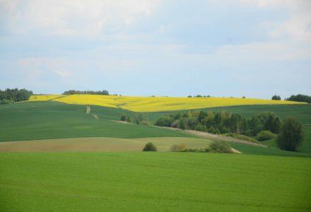 Ubezpieczenia rolne po nowemu. Prezydent podpisał nowelę ustawy