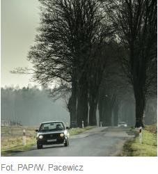 Wsparcie na drogi. Rusza nabór wniosków na drogi lokalne