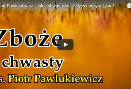 Ks. Piotr Pawlukiewicz – Jakie chwasty sieje Zły w naszym życiu?