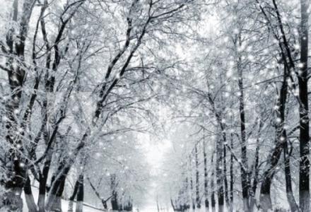 Nadciąga mróz i śnieg. Zadbajmy o potrzebujących