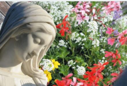 Wniebowzięcie Matki Bożej – 15 sierpnia: święcenie ziół – zwyczaj stary i ciągle żywy