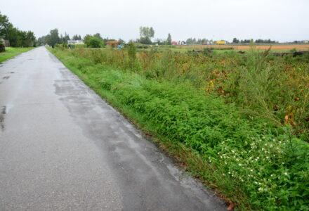 Czy jeszcze za panowania Wójta Ryszarda Gliwińskiego jest szansa na przebudowę drogi w Borowinie Sitanieckiej?