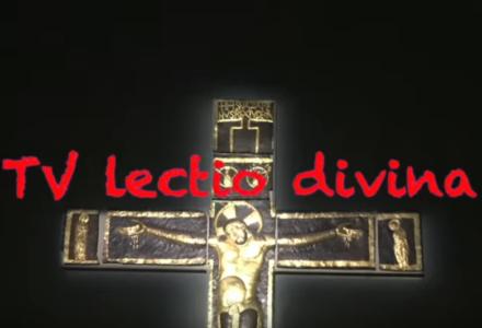 """Prostowanie dróg! TV lectio divina – II Niedziela Adwentu """"B"""""""