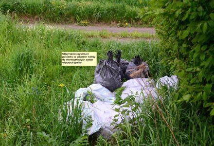 Przez stronę GIOŚ można zgłosić porzucone odpady